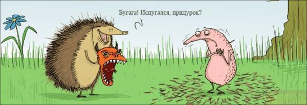 http://img1.liveinternet.ru/images/attach/b/0/10445/10445750_116832089311177.jpg