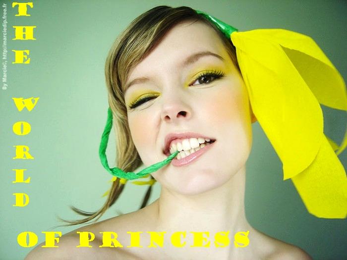 принцесса (700x525, 194Kb)