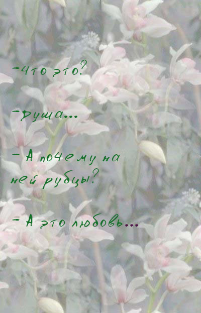 (400x623, 64Kb)