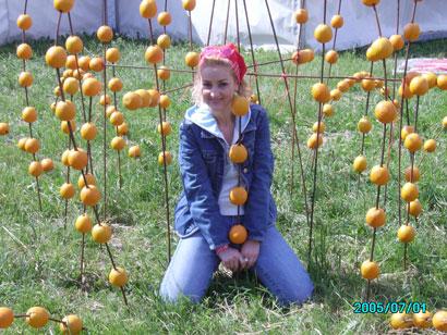 Апельсин3 (410x308, 60Kb)