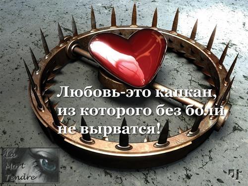 14971945_The_trap_by_da5id2112 (500x375, 82Kb)