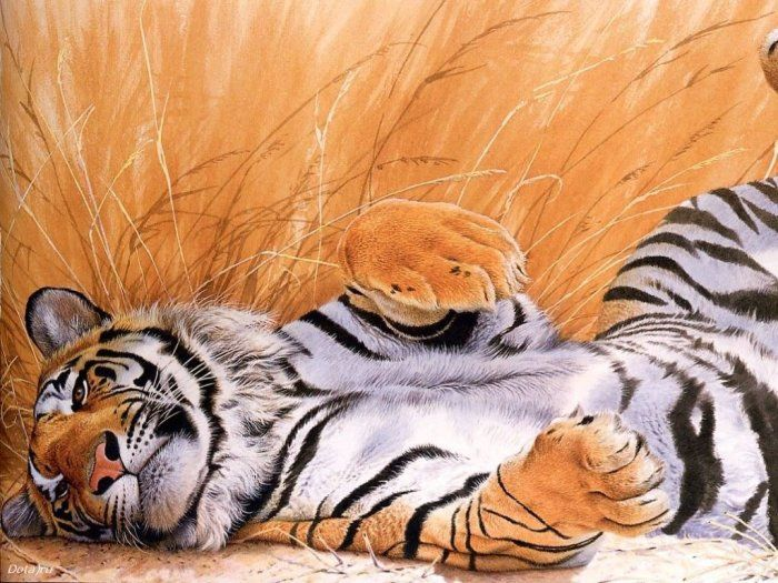 http://img1.liveinternet.ru/images/attach/b/1/18963/18963823_animals_61.jpg