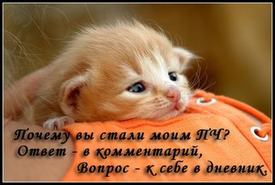 7926567_7301556_00000109web (390x263, 83Kb)