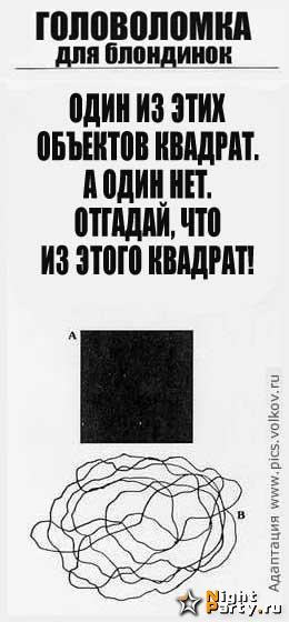(260x560, 44Kb)