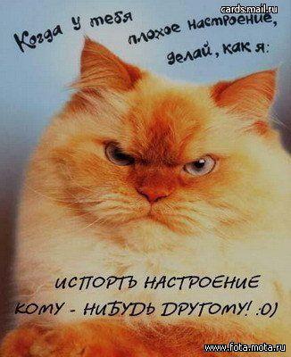 http://img1.liveinternet.ru/images/attach/b/2/0/164/164442_1188554833_161.jpg