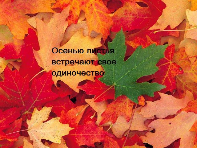 Осень. Стих