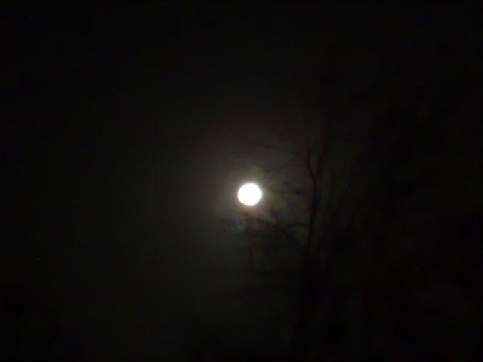Луна (700x525, 17Kb)