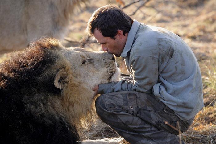 http://img1.liveinternet.ru/images/attach/b/2/21/431/21431247_1183014636_lions_vs_human_1.jpg