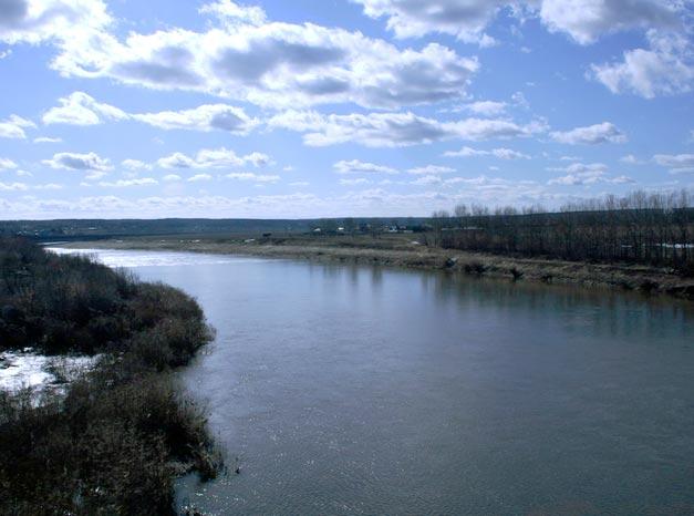 Дон река в европейской части россии
