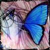 http://img1.liveinternet.ru/images/attach/b/2/23/692/23692730_15474362_count_victor_licht002_copy.jpg