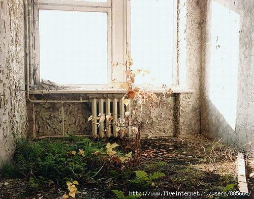 Чернобыль (500x391, 75Kb)