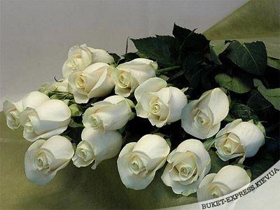 http://img1.liveinternet.ru/images/attach/b/2/24/372/24372238_image.jpg
