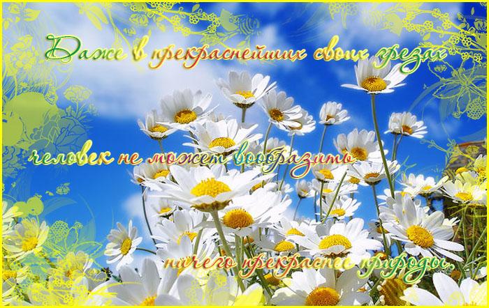 http://img1.liveinternet.ru/images/attach/b/2/24/557/24557531_26336477_hjvfirj.jpg