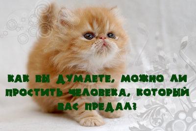 http://img1.liveinternet.ru/images/attach/b/2/24/600/24600026_11139_kopiya.jpg