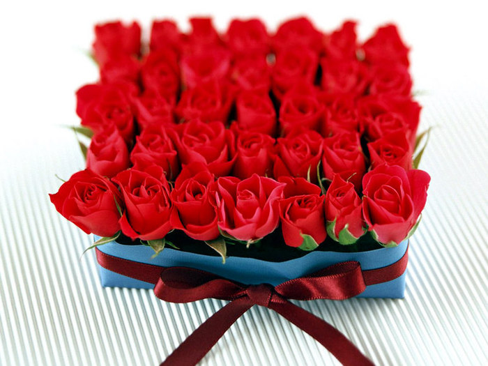 http://img1.liveinternet.ru/images/attach/b/2/24/674/24674186_1210441468_roses_in_box_800x600.jpg