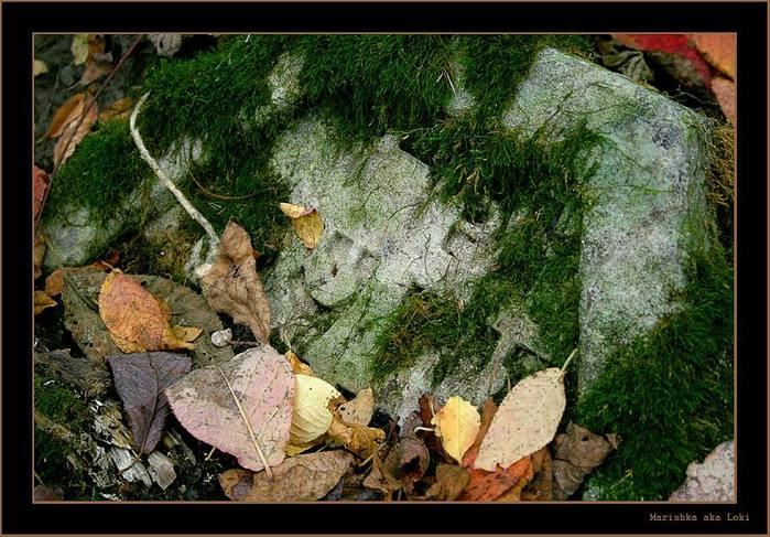 picturecontent-pid-6159-et-341c830 (699x487, 86Kb)
