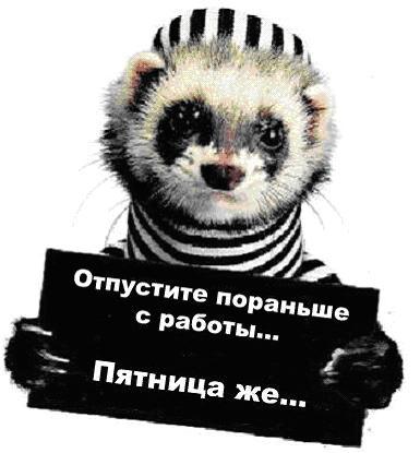 [Изображение: 25259715_Pyatnica.JPG]