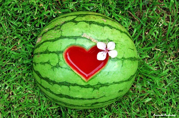 23200095_22243842_20933939_Watermelon_by_Yourmumsafag (600x398, 94Kb)