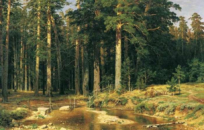 """На знаменитой картине Ивана Шишкина  """"Корабельная роща """" просматриваются мотивы Золотого сечения."""