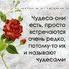 http://img1.liveinternet.ru/images/attach/b/3//41/391/41391735_15.jpg