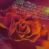 http://img1.liveinternet.ru/images/attach/b/3//41/433/41433390_1237798509_15.png