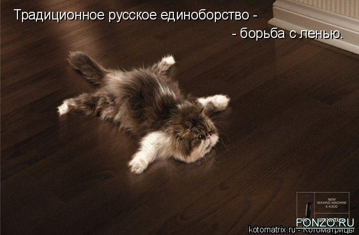 http://img1.liveinternet.ru/images/attach/b/3//41/630/41630403_3_kotomatrix_25.jpg