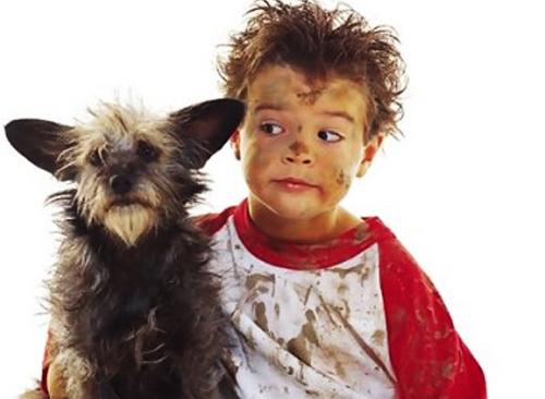 Собаки и хозяева похожи