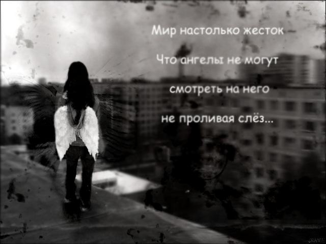 5520784_4680208_mir_nastolko_zhestok (640x480, 85Kb)