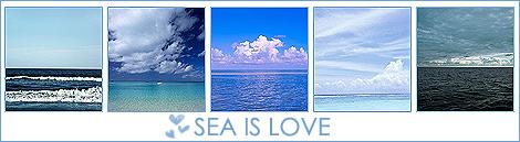 http://img1.liveinternet.ru/images/attach/b/3/10/33/10033493_1196350165_1008489_18883250_Sea.jpg
