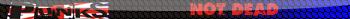 1196623742_punkfg6 (350x19, 25Kb)