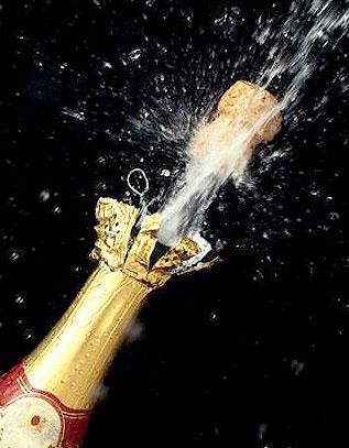 Шампанское (317x407, 37Kb)
