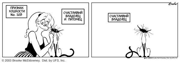 Кошки13 (600x210, 23Kb)