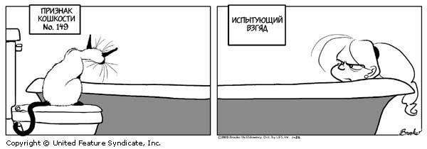 Кошки16 (600x210, 21Kb)