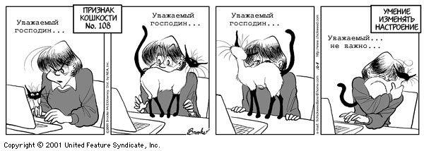 Кошки29 (600x214, 37Kb)