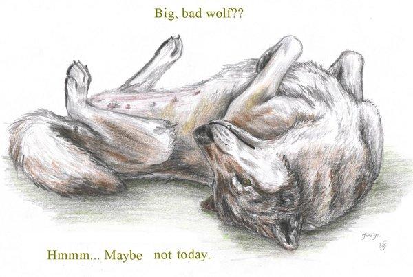 90799_Big__bad_wolf__by_DaphneBlake (600x403, 50Kb)