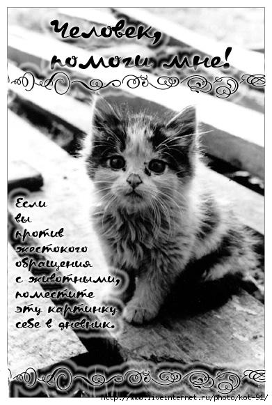 9946344_protiv (391x581, 156Kb)
