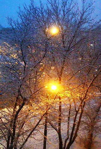 Праздники России: февраль
