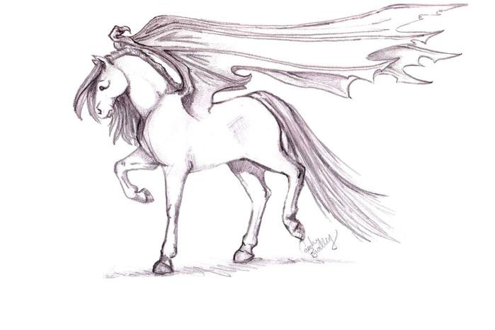 Gothic_Pegasus_by_carolinebradley (699x466, 57Kb)