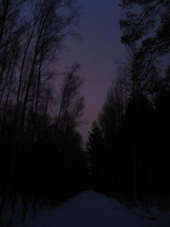 http://img1.liveinternet.ru/images/attach/b/3/16/332/16332555_IMG_0123p.jpg