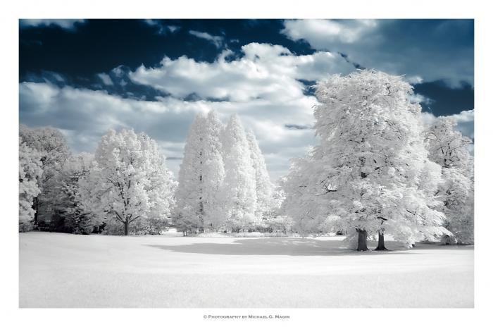 У леса на опушке жила Зима в избушке.  Она снежки солила в березовой кадушке, Она сучила пряжу, она ткала холсты...