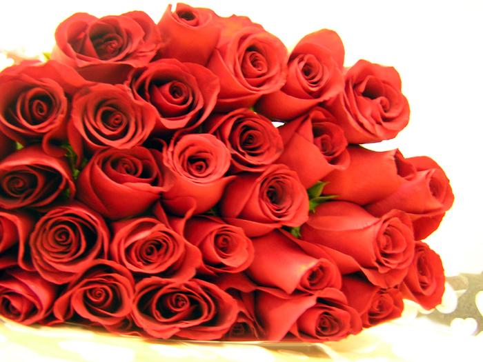 http://img1.liveinternet.ru/images/attach/b/3/18/28/18028575_rozochki.jpg