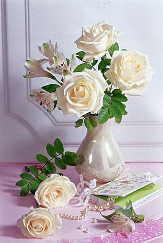 1204384028_flower022 (335x500, 43Kb)