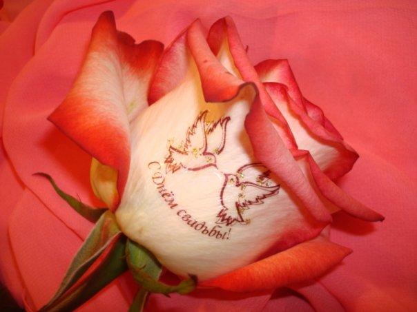 Романтические красивые открытки с пожеланиями