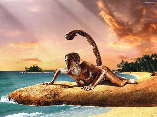 сексуальность скорпиона: