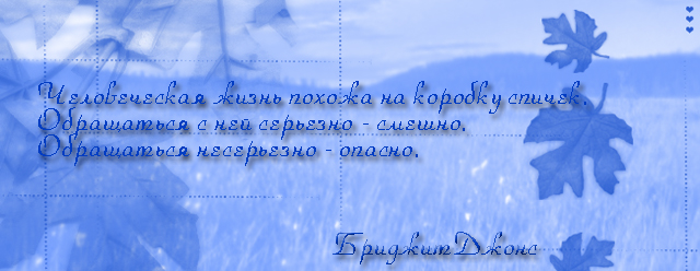 5843414_6134691_shapka_dlya_bridzhit (640x248, 156Kb)