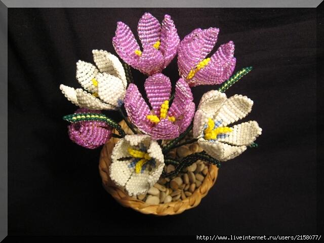 Плетение из бисера крокусов