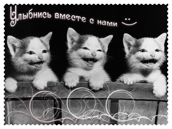 http://img1.liveinternet.ru/images/attach/b/3/21/907/21907982_8ee6.jpg