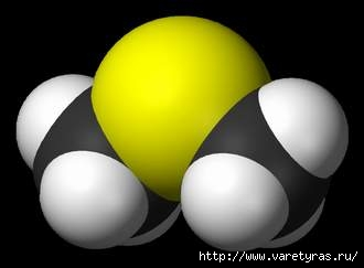 1215452735_800pxdimethylsulfide3dvdw (330x243, 6Kb)