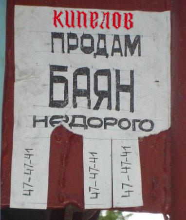 kipelov-bayan (382x450, 34Kb)