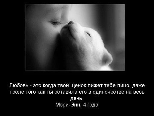 1191506111_2056190_opros_008 (512x384, 19Kb)